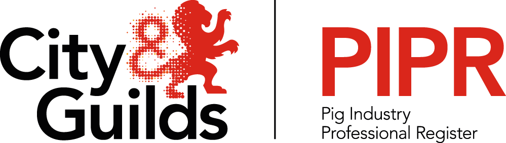 City & Guilds PIPR logo 2017