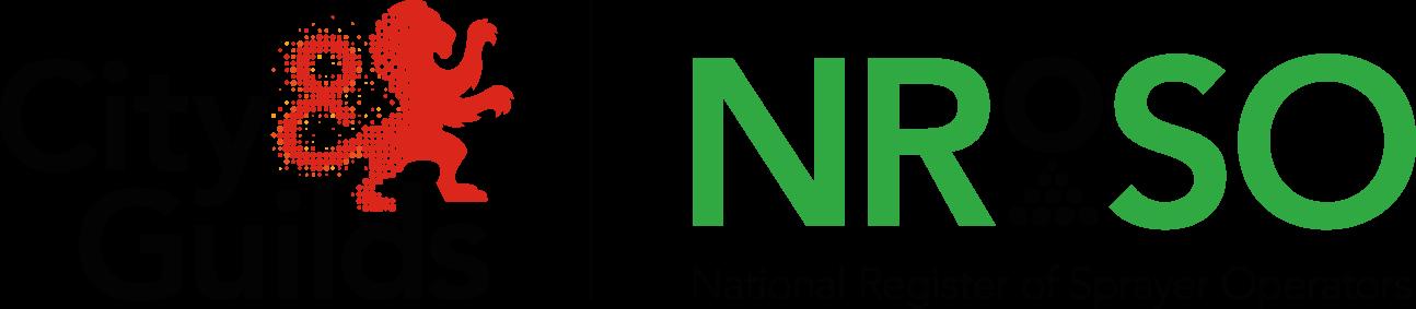 City & Guilds NRoSO Logo 2017